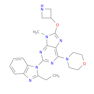 CCc1nc2c(n1c1nc(N3CCOCC3)c3c(n1)n(C)c(n3)OC1CNC1)cccc2